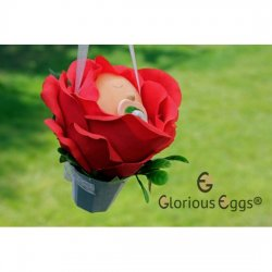 DIY Blumenkind-Rose- Glorious-Eggs